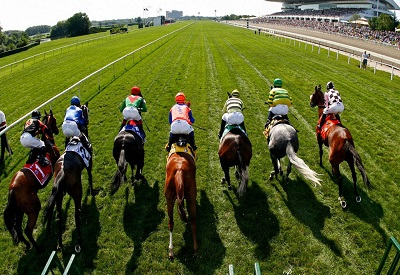 How to analyze a horse race